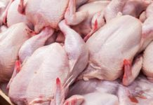 Izvoz pilećeg mesa u EU
