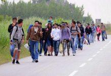 Migrantska kriza poslovanje