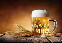 Pivo kvasac