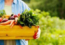 Cijene poljoprivrednih proizvoda