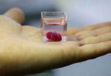 3D srce